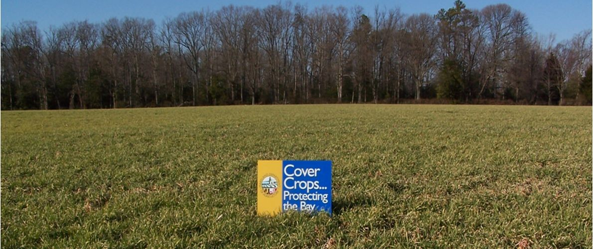 Cover Crop Program  – Spring Certification Dates