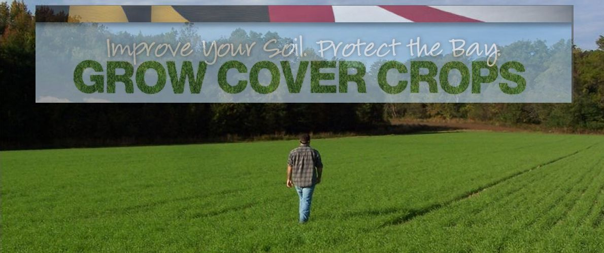 Cover Crop Program Fall Certification
