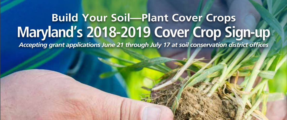 2018-2019 Cover Crop Program Sign-Up Ongoing